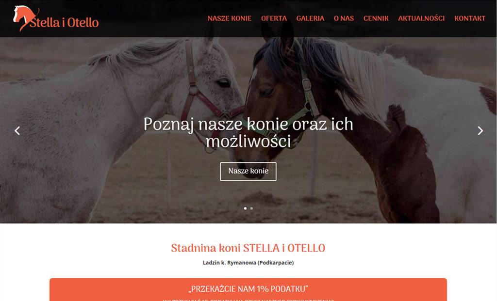 Strona www dla stadniny (Strony www Rzeszów)